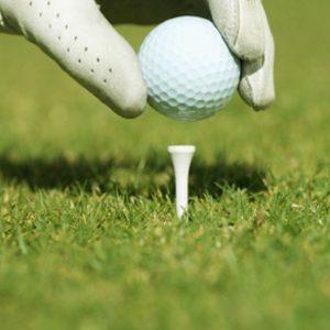 golftee2